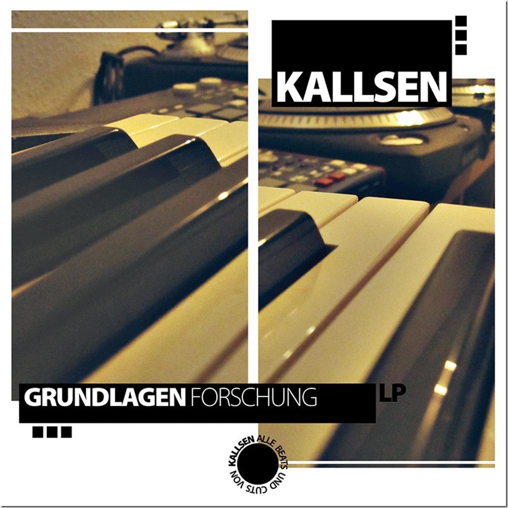 Kallsen-Grundlagenfroschung-Frontcover