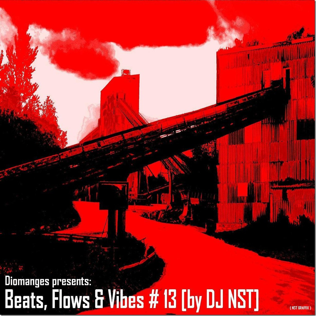 Diomanges-Beats-Flows-Vibes-13-DJ-NST-Cover